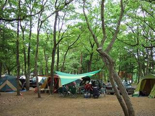 090505城里町キャンプ 038.jpg