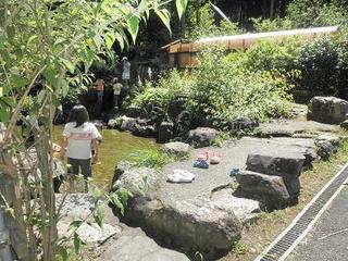 花の森7.JPG